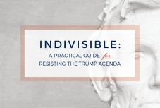 indivisible-image1