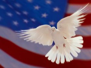 flag dove