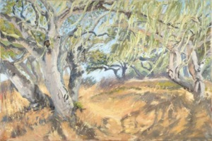 Live Oak Sanctuary, Paola Berthoin